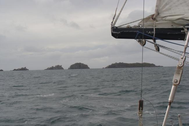 Foto14 - Virando Carcass Island (Isla del Rosario) por el sudeste.